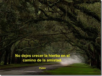 frases amor y amistad airesdefiestas (6)