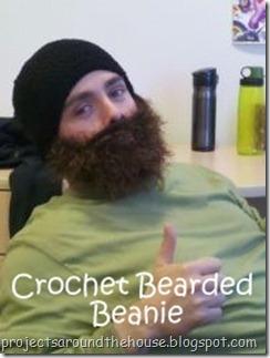 bearded beanie[1]-001