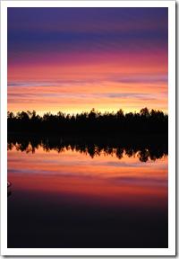 finland 2010 368