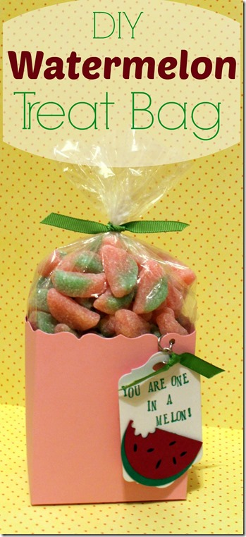 Watermelon_Treat_Bag-001