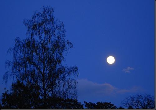 kuu täysi 017