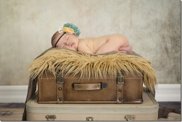 Newborn Photo - Luggage - Lindsey Dutra Photography