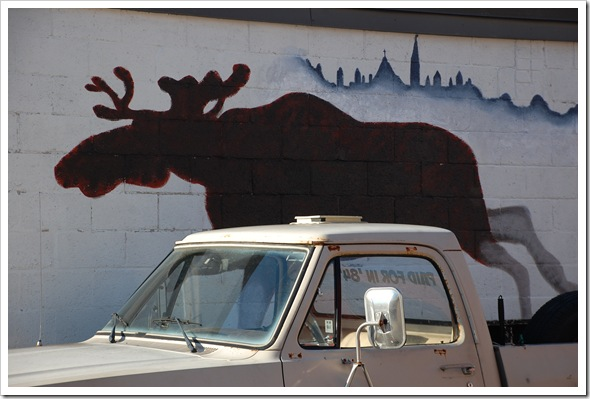 moose truck