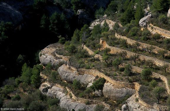 Montsant, Parc NaturalMarges de pedra seca al serrat del MaiangoMargalef, Priorat, Tarragona2002.02