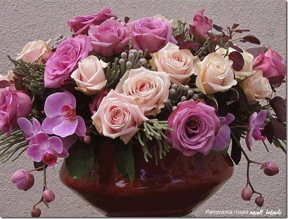 cesta-rosas-flores-facebook-tumblr