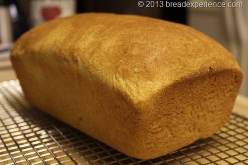 semolina-sandwich-loaf_17