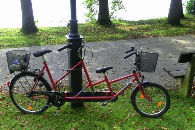 CIMG3211-1 tandem bike