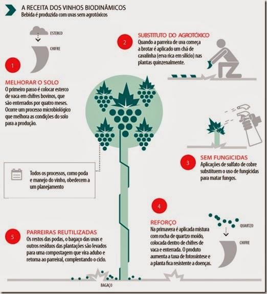 cultivo-biodinamico-vinho-e-delicias