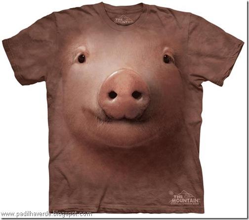 camisetas de Montain-8