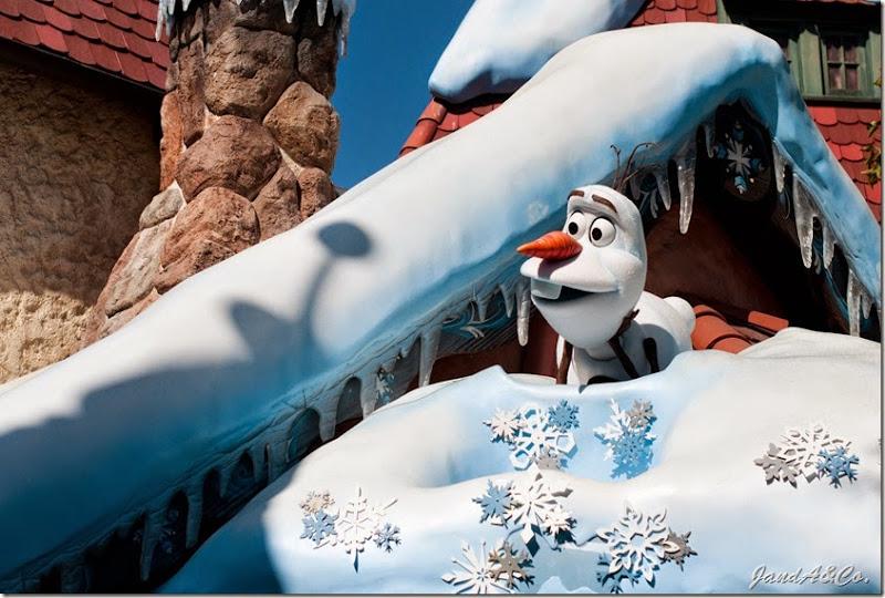 Disneyland 2014-0041