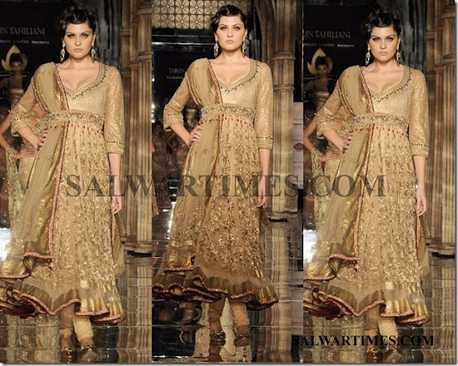 the gallery for gt designer suits by tarun tahiliani