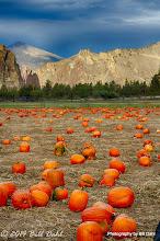 Autumn 10-27 - 57