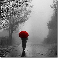 caminhando a chuva