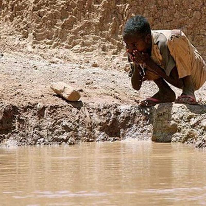 El cambio climático afectará la cantidad y calidad del agua subterránea, recurso vital para la humanidad