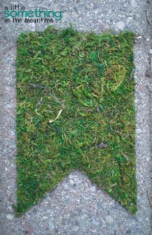 Sheet Moss Pennant WM