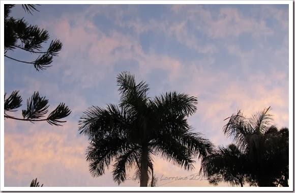 11-07-sunrise