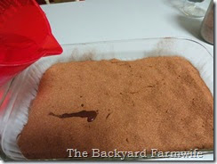 ooey gooey chocolate cake - The Backyard Farmwife