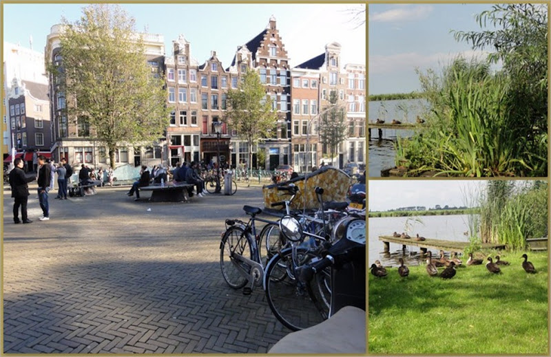 4-Amsterdam6