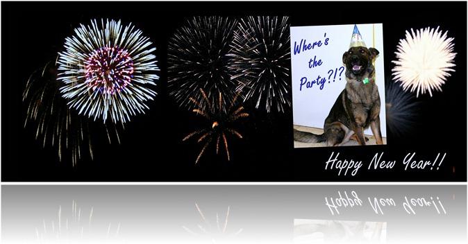 2012.12.31 Happy New Year