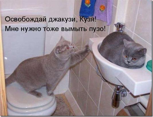 1275829343_kotomatrix_047