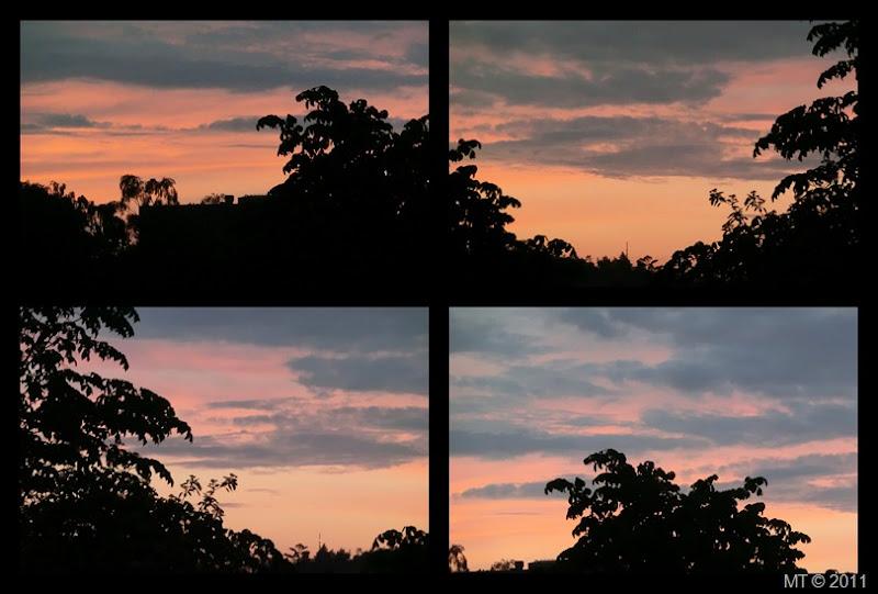 2011-06-07 dawn3