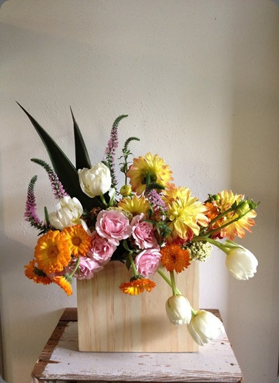 IMG_0483 (1) rosehip flora