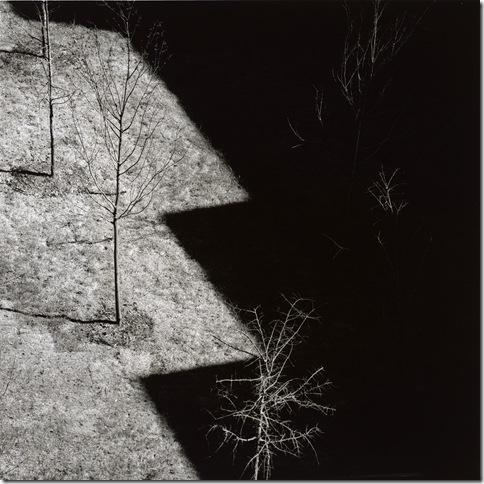 Harry Callahan_Ansley Park_Atlanta_1992