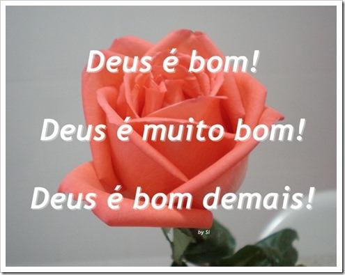 Rosa_ECC