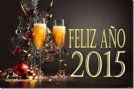 feliz año nuevo cosasdivertidas (6)