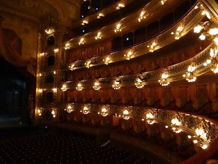 16. Loje in Teatrul Colon.JPG