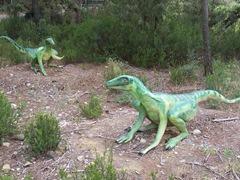 2008.09.10-021 troodons