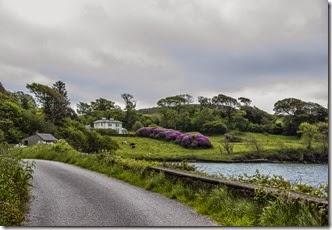 Loch Hyne - West Cork