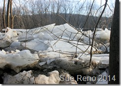 Susquehann River ice jam, by Sue Reno, Image 3