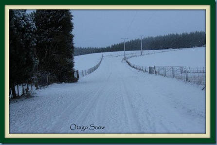 Otago Snow framed