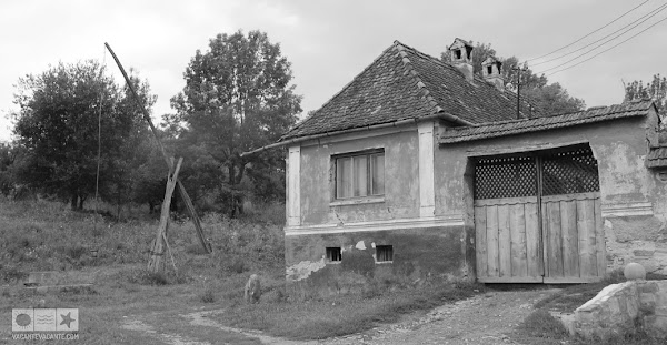 IMG_1890.JPG