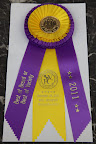 Best of Breed from the South Windsor Kennel Club in West Springfield Massachusetts!