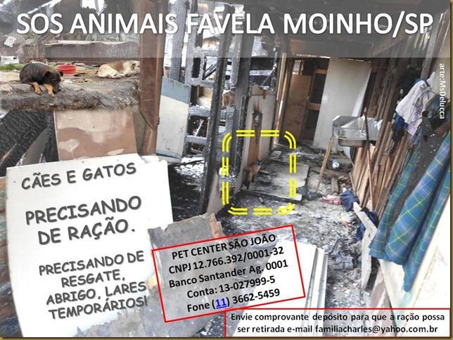 sos_animaisfmoinho01