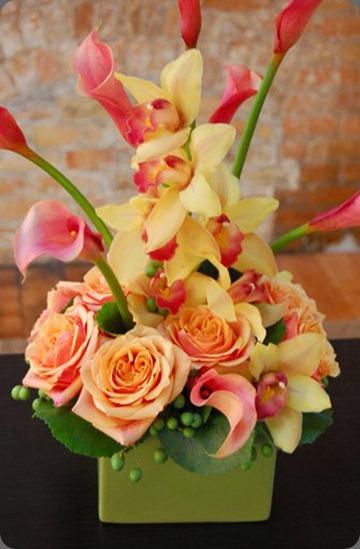 39622_423188005956_4501738_n flora bella