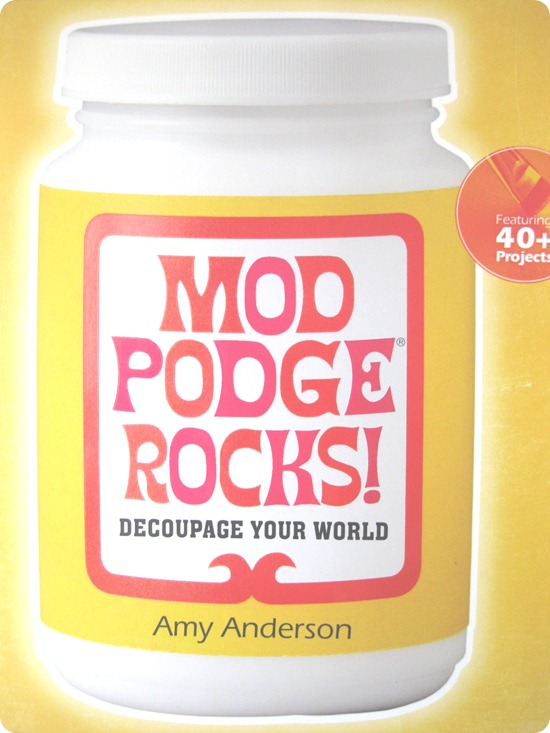 Twentysomething review of Mod Podge Rocks 001