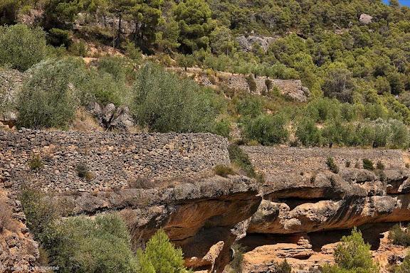 Marges i oliveres al Montsant entre la Bisbal i Margalef.DOP Siurana.La Bisbal de Falset, Priorat, Tarragona