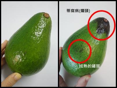 酪梨成熟度辨別.jpg