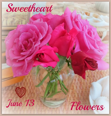 Roses2IMG_4359