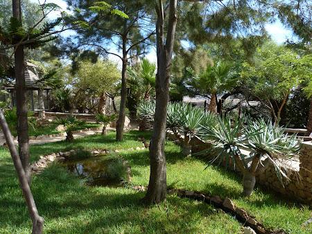 Gradina botanica Porto Santo