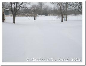 tn_2012-01-20 Winter (2)