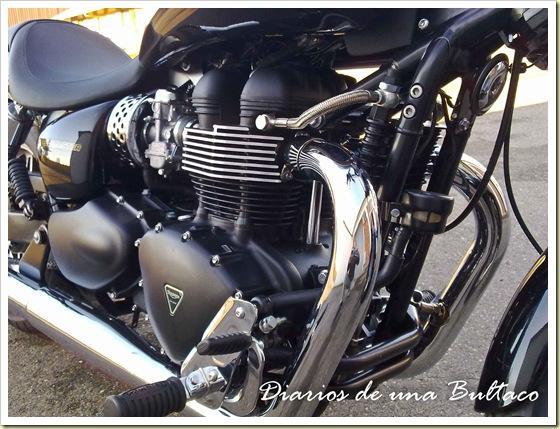 Triumph Speedmaster-2