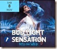 Bud light Sensation