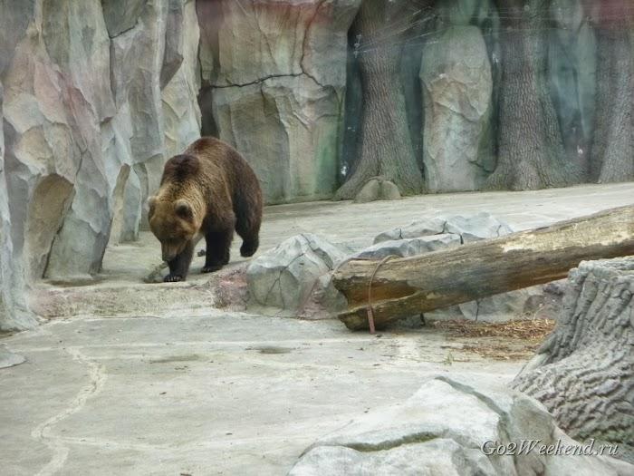 Kiev_Zoo_23.jpg