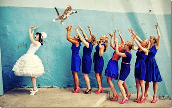 cat-toss-weddings-8