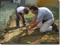 un petit jardin (4)