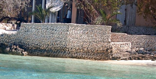 conch walls